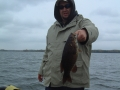 TFF-Nice Fall smallie
